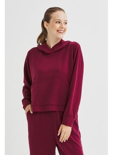 Penti Kadın Cupro Sweatshirt Sweatshirt PHPPTB6N20SK Renkli